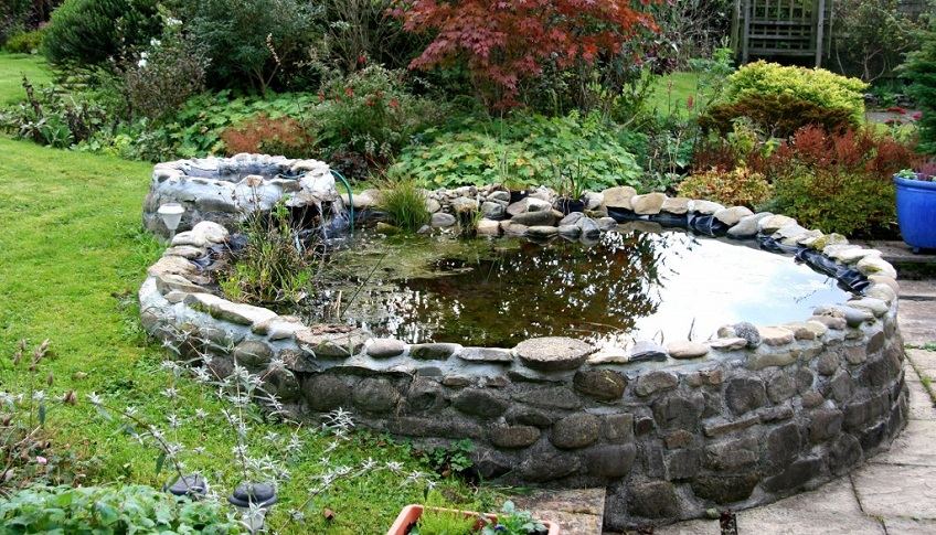 Guy told to get rid of pond because it could be a danger for Garden pond supplies